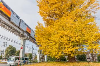 多摩モノレール2.jpg