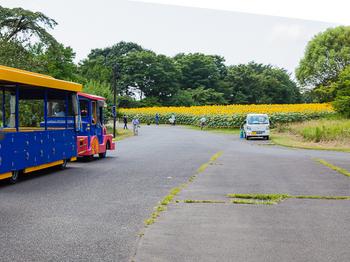 昭和記念公園1.jpg