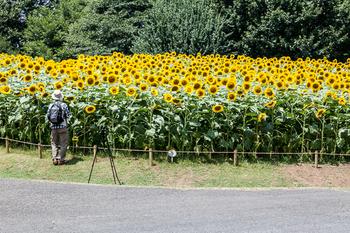 昭和記念公園24.jpg