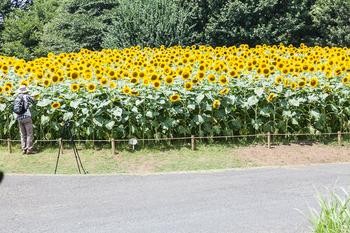 昭和記念公園25.jpg