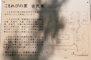 昭和記念公園29.jpg