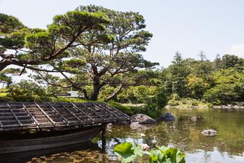 昭和記念公園35.jpg