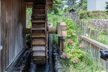 昭和記念公園32.jpg