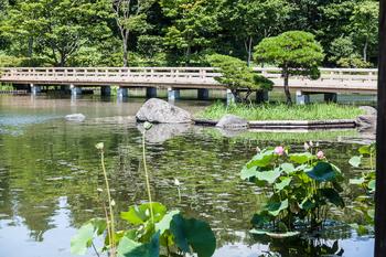 昭和記念公園37.jpg