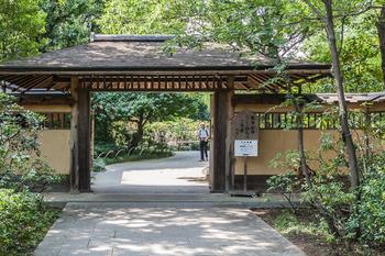 昭和記念公園38.jpg