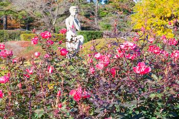 神代植物園_18.jpg